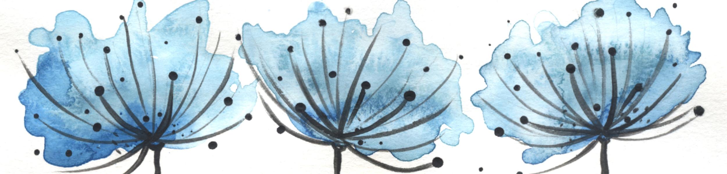 Bannière Capsule 1 Minibook 2 bleue 2500×600