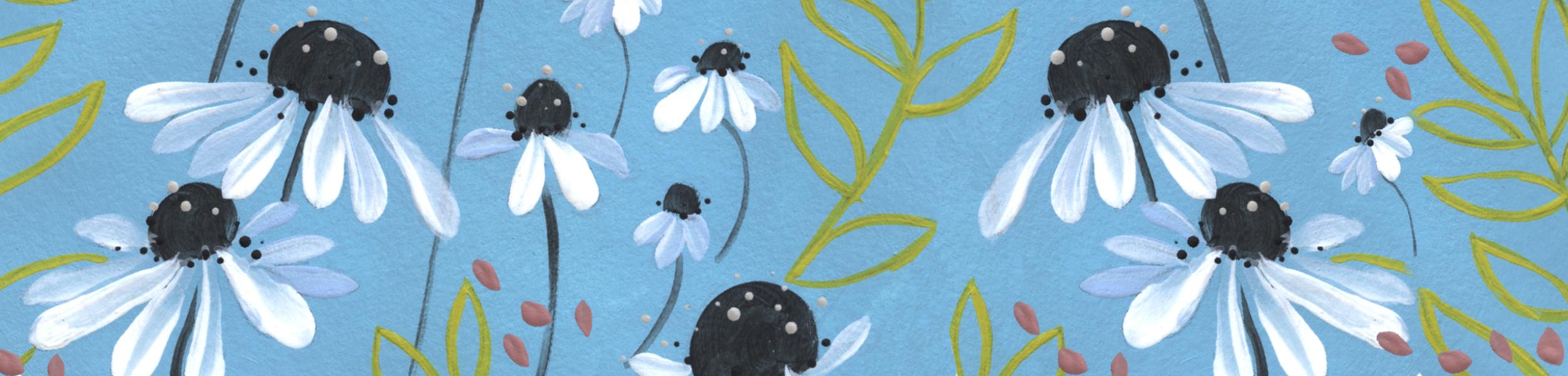 Bannière Capsule 2 Minibook 2 Marguerites 2500×600